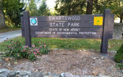 Camping at Swartswood State Park