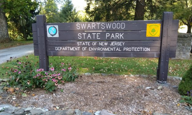 Camping at Swartswood State Park